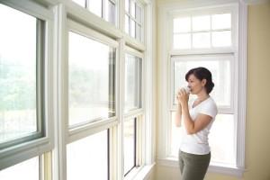 window installation renos